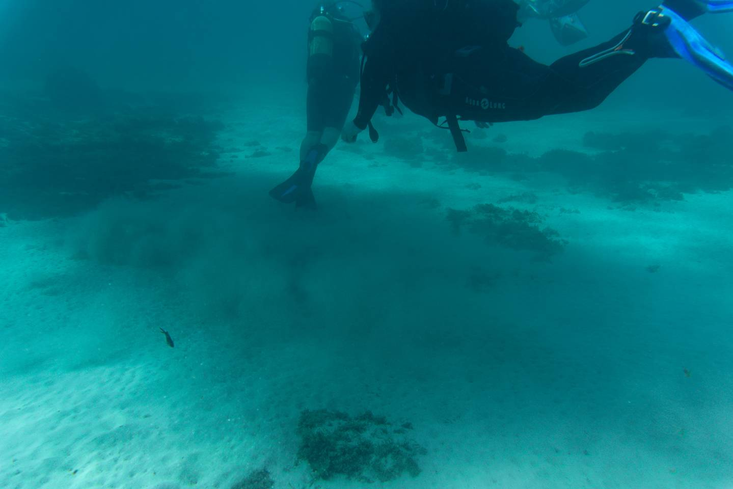 Buoyancy training for the Open Water Diver Course