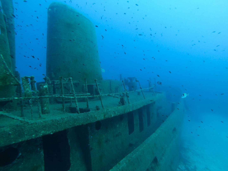 MV Rozi Malta Diving