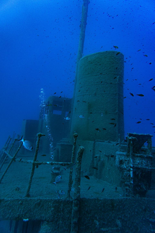 MV-Rozi Malta