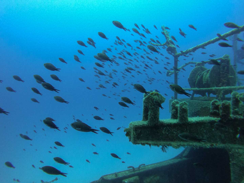 Nitrox Wreck Diving